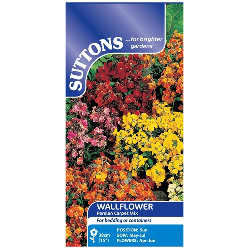 Suttons  Wallflower Persian Carpet Flower Seeds