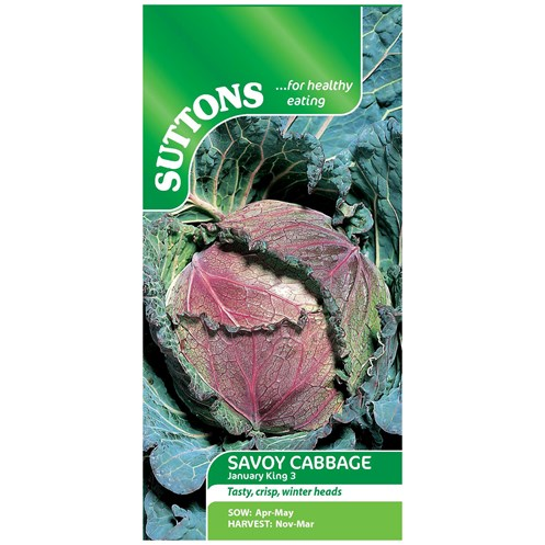 Suttons  Savoy Cabbage January King 3 Vegetable Seeds