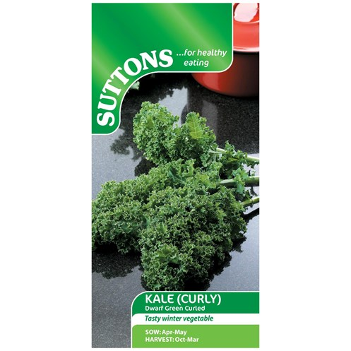 Suttons  Curly Kale Dwarf Green Vegetable Seeds